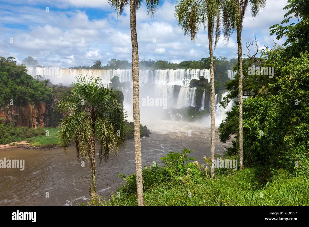 Las Cataratas del Iguazú, Argentina Foto de stock