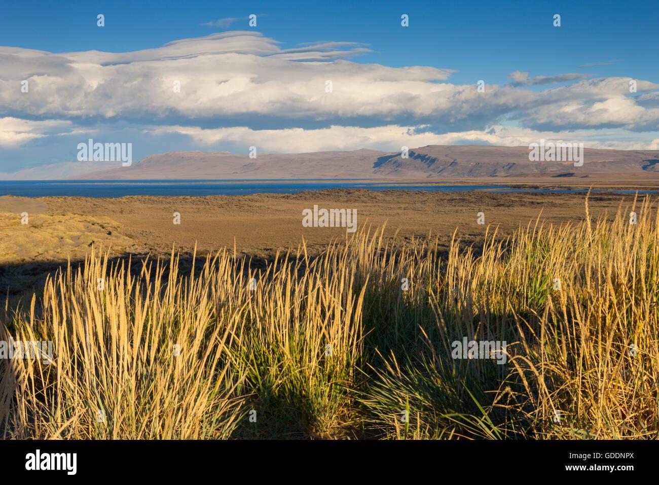 Lago Argentino,Argentina,Patagonia Imagen De Stock