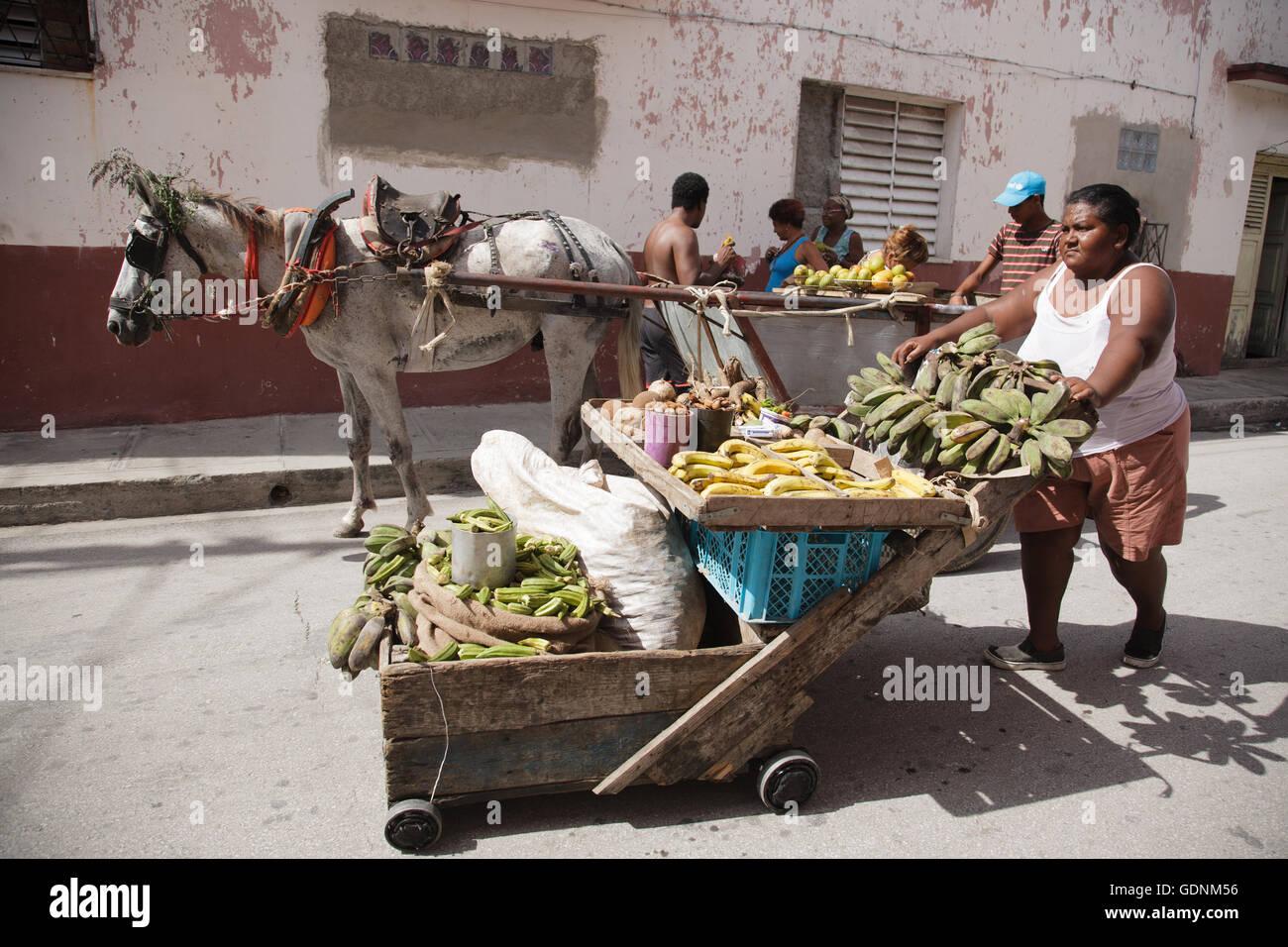 Image result for vendedor en santiago de Cuba con caballo