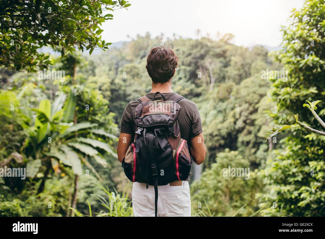 Vista trasera del hombre mirando la cascada. Excursionista macho en el bosque permanente y ver la cascada. Imagen De Stock