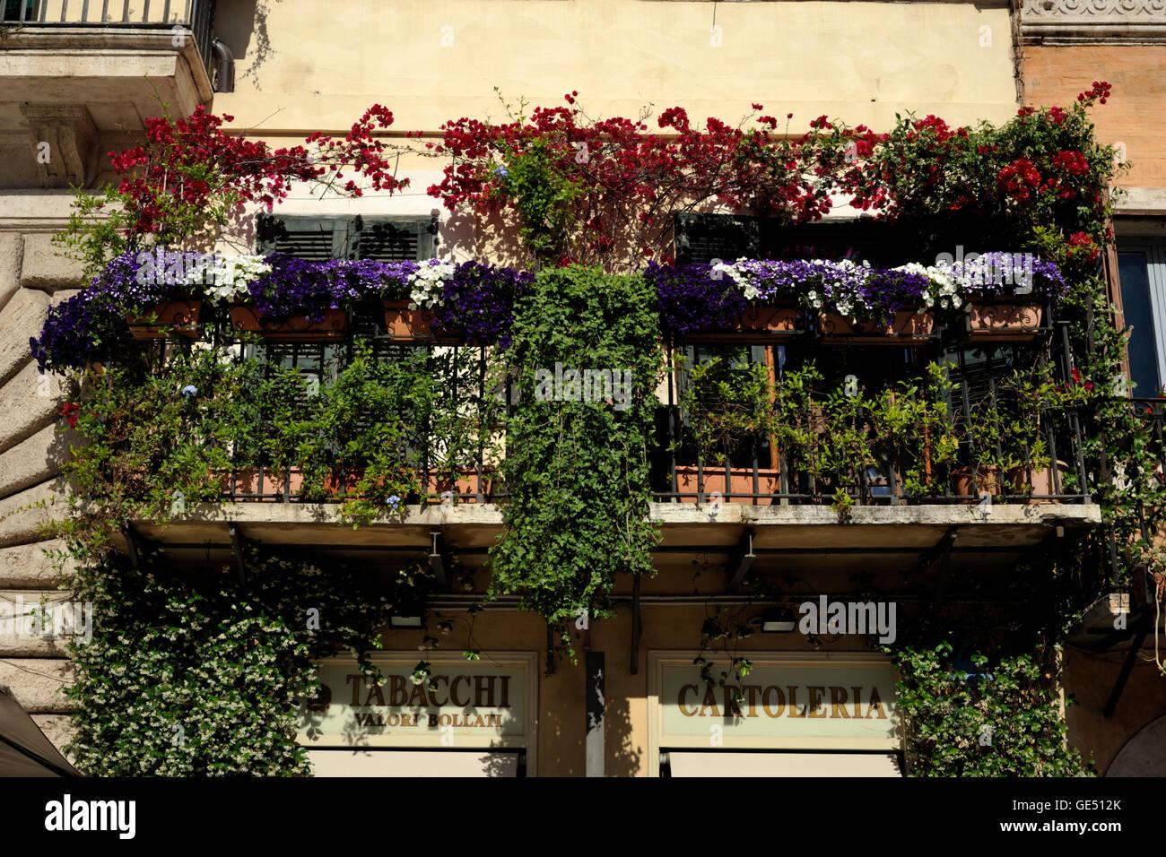 Italia, Roma, balcón con flores. Imagen De Stock