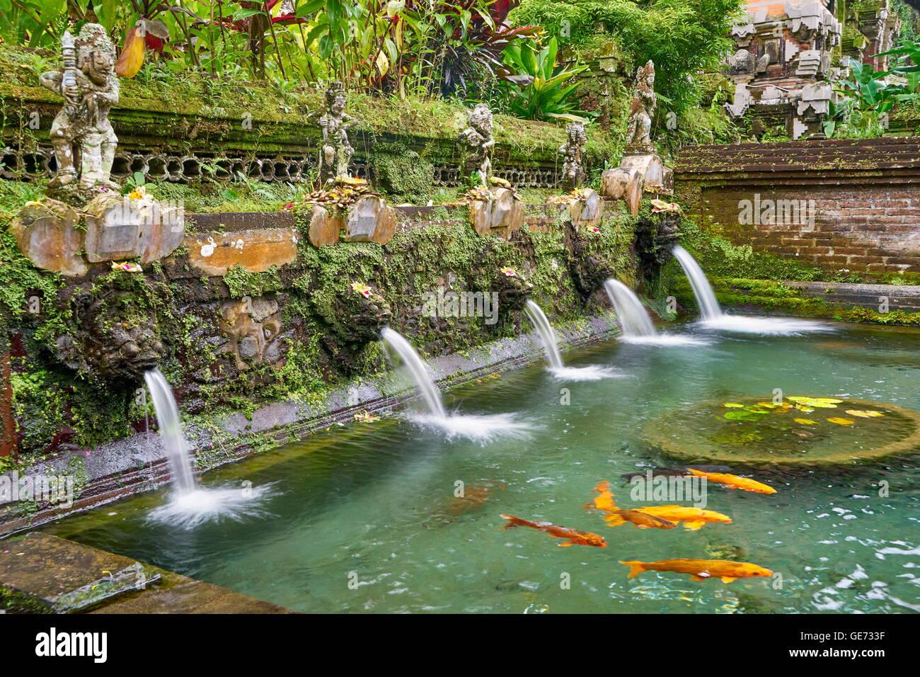 Los resortes en el santo templo Pura Gunung Kawi, Bali, Indonesia Imagen De Stock