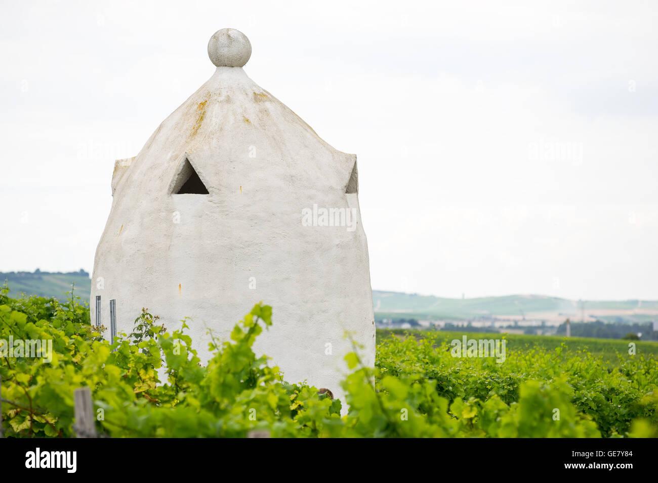 Viña refugio en el estilo de un Italiano Trullo de Rheinhessen, Alemania, Rhine-Hesse. Imagen De Stock