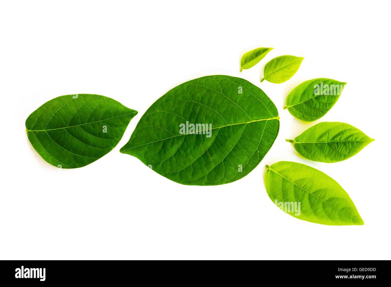 La huella de carbono es una medida del impacto de nuestras actividades sobre el medio ambiente, y en particular Imagen De Stock