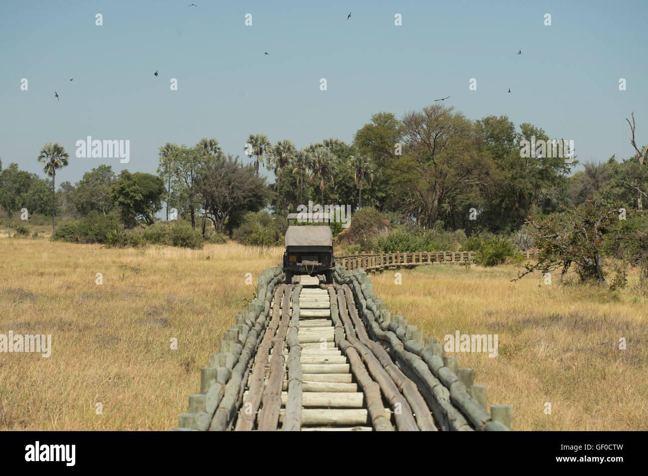 Puente de registro en el Delta del Okavango cerca Mombo camp Foto de stock