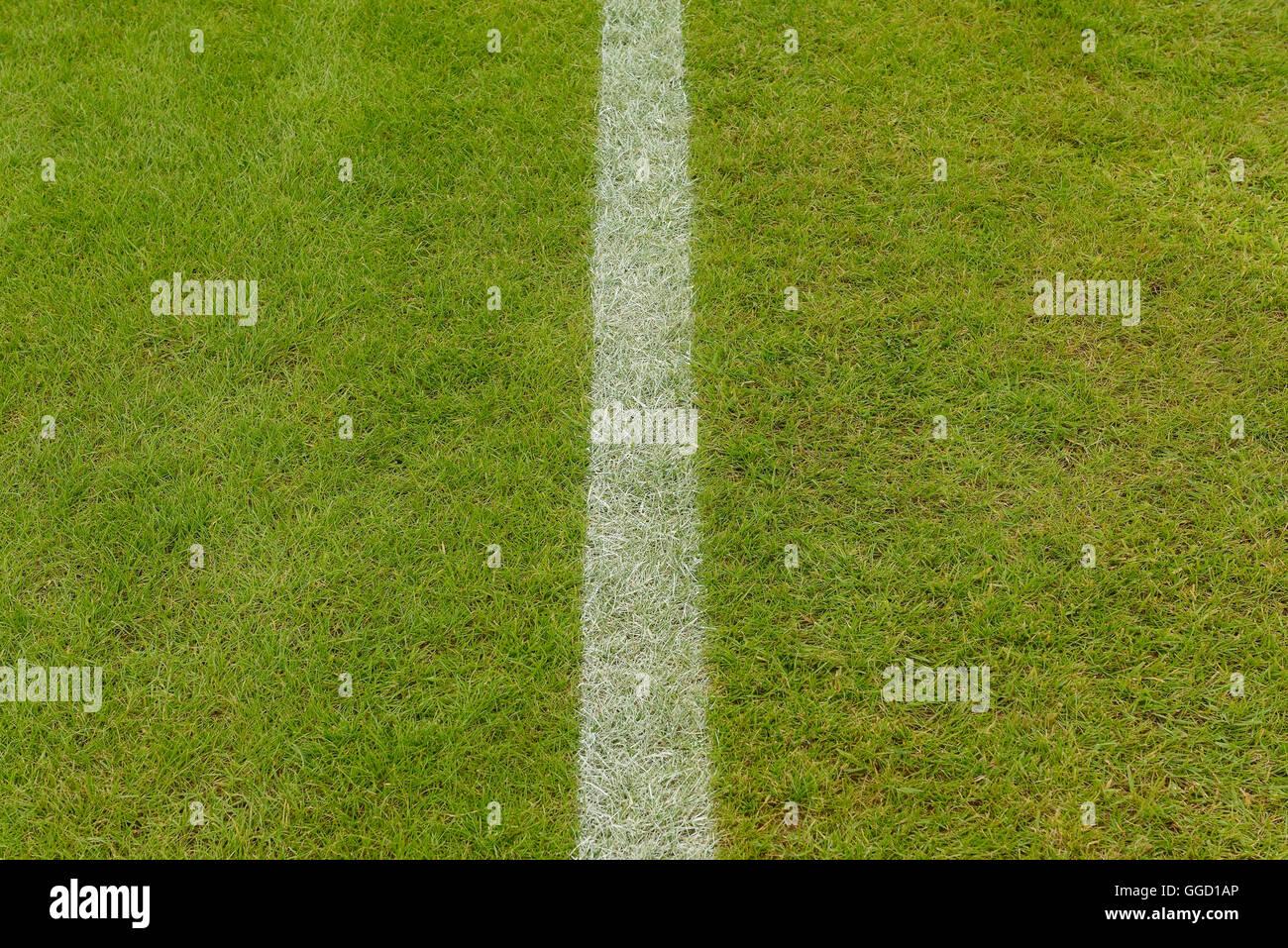 Hierba en un campo de deportes con una línea pintada en blanco Imagen De Stock