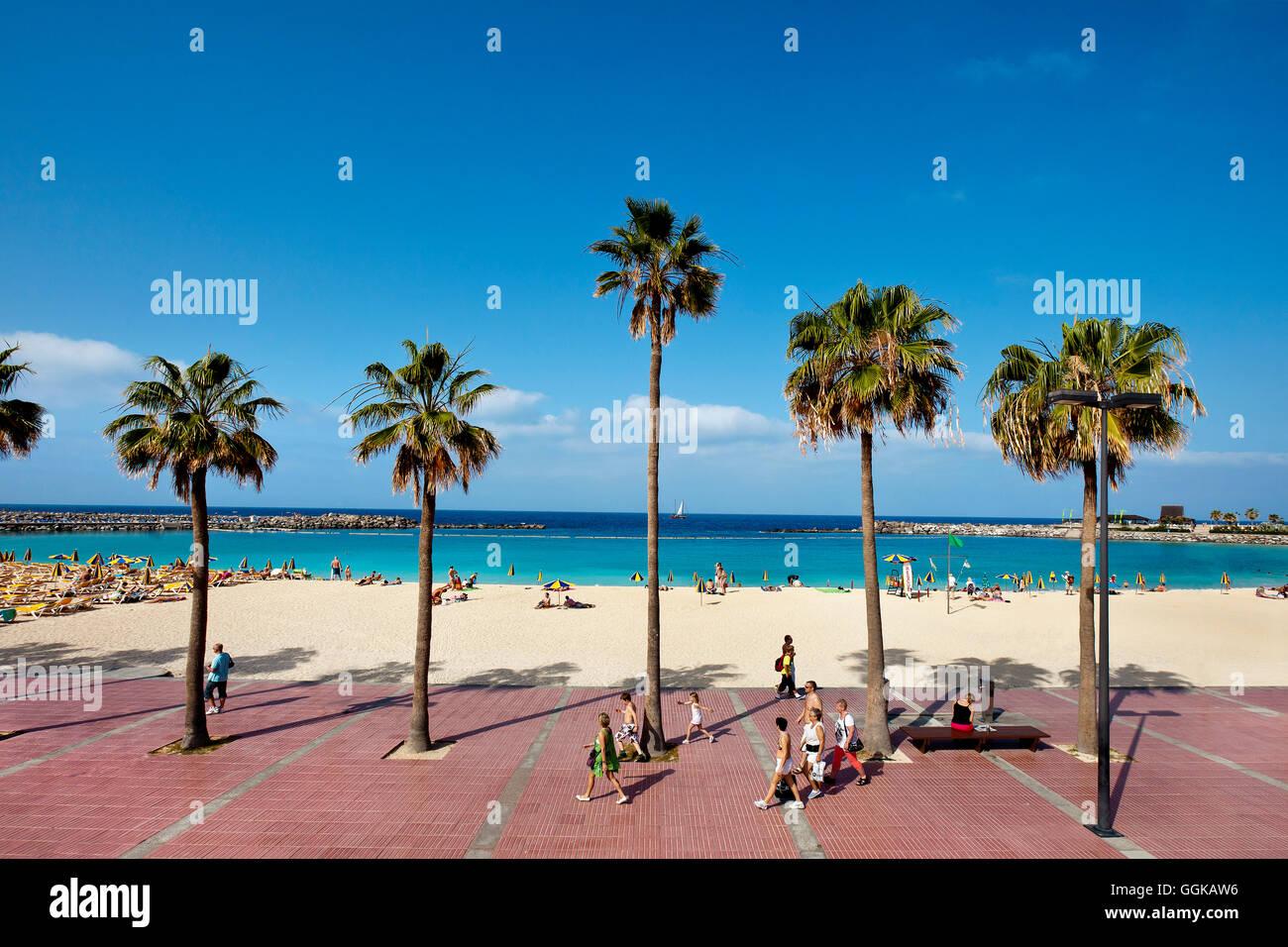 Playa y paseo a la Playa de Amadores, Puerto Rico, Gran Canaria, Islas Canarias, España Imagen De Stock
