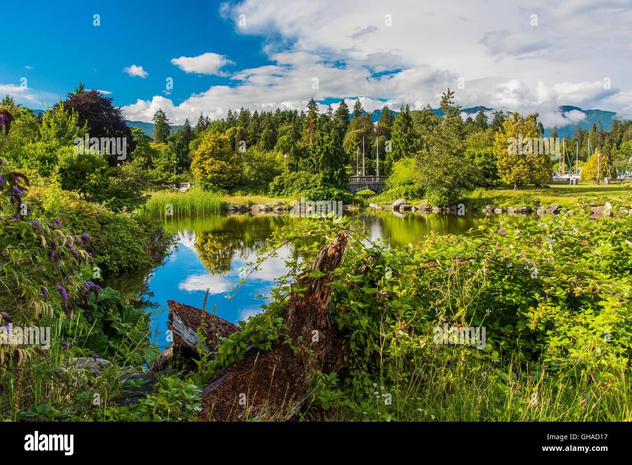 Stanley Park, Vancouver, British Columbia, Canadá Imagen De Stock