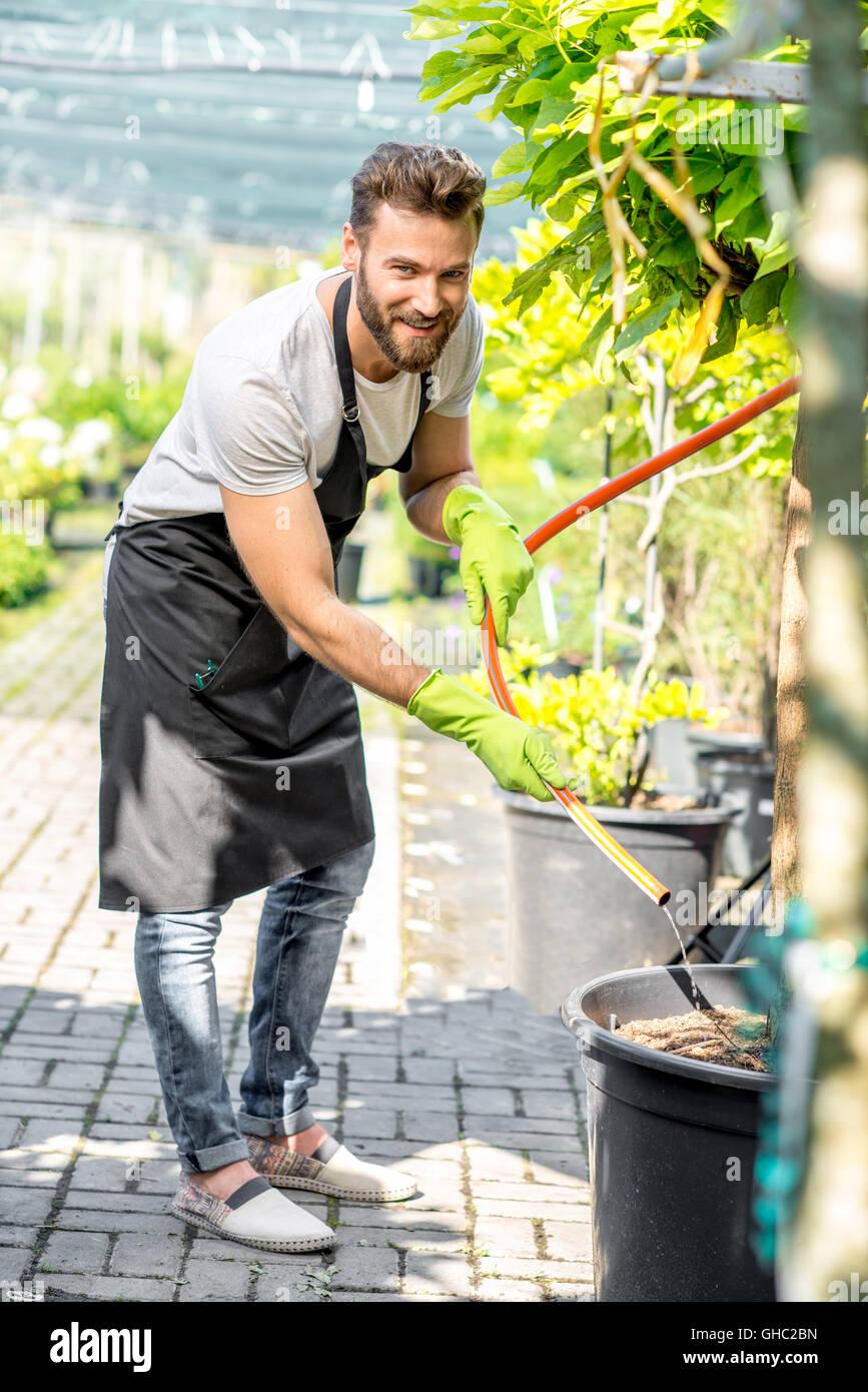 Guapo jardinero regando el árbol Imagen De Stock