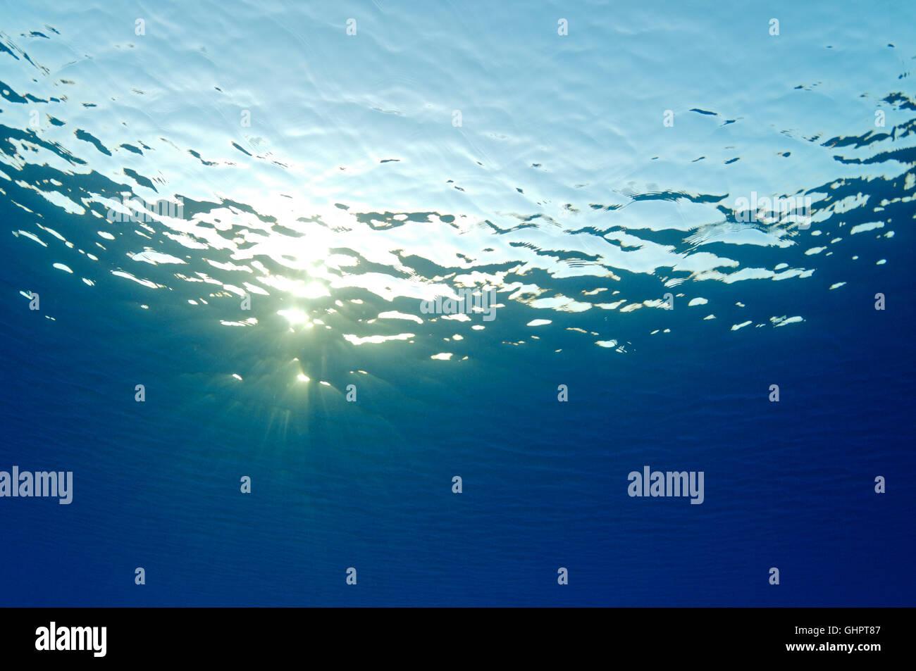 Superficie de Agua Azul frum subacuático con rayos de sol, mar Rojo, Egipto, África Imagen De Stock