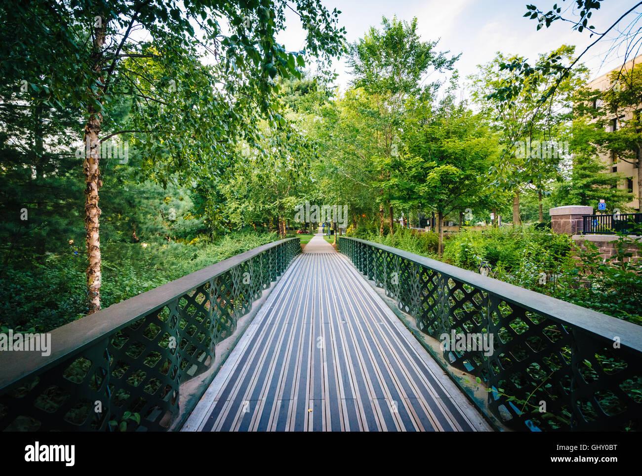 Puente peatonal en la Universidad de Yale, en New Haven, Connecticut. Foto de stock