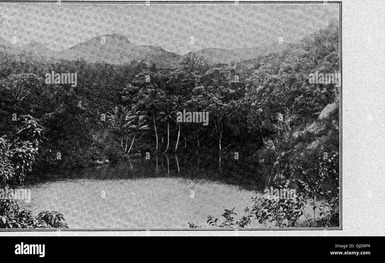 Memorias de la Bernice Pauahi Bishop Museum de la polinesia etnología e Historia Natural (1899) Foto de stock