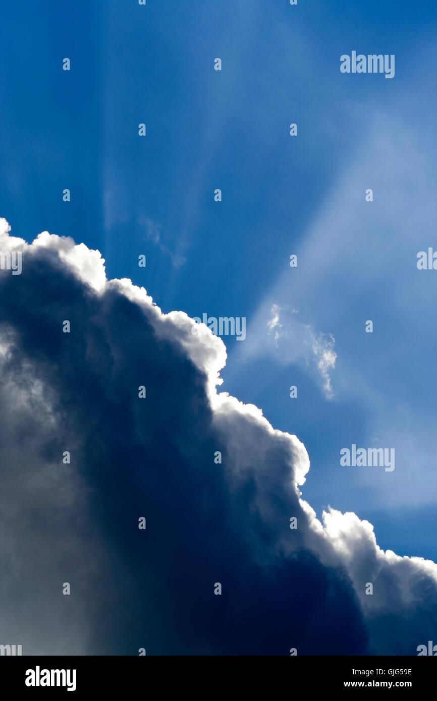 Blue Shine brilla Foto de stock