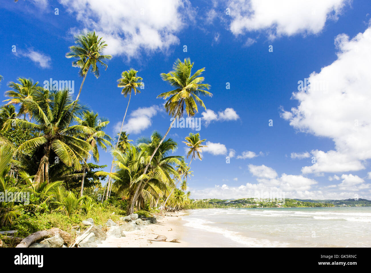 Paisaje paisaje paisaje Imagen De Stock