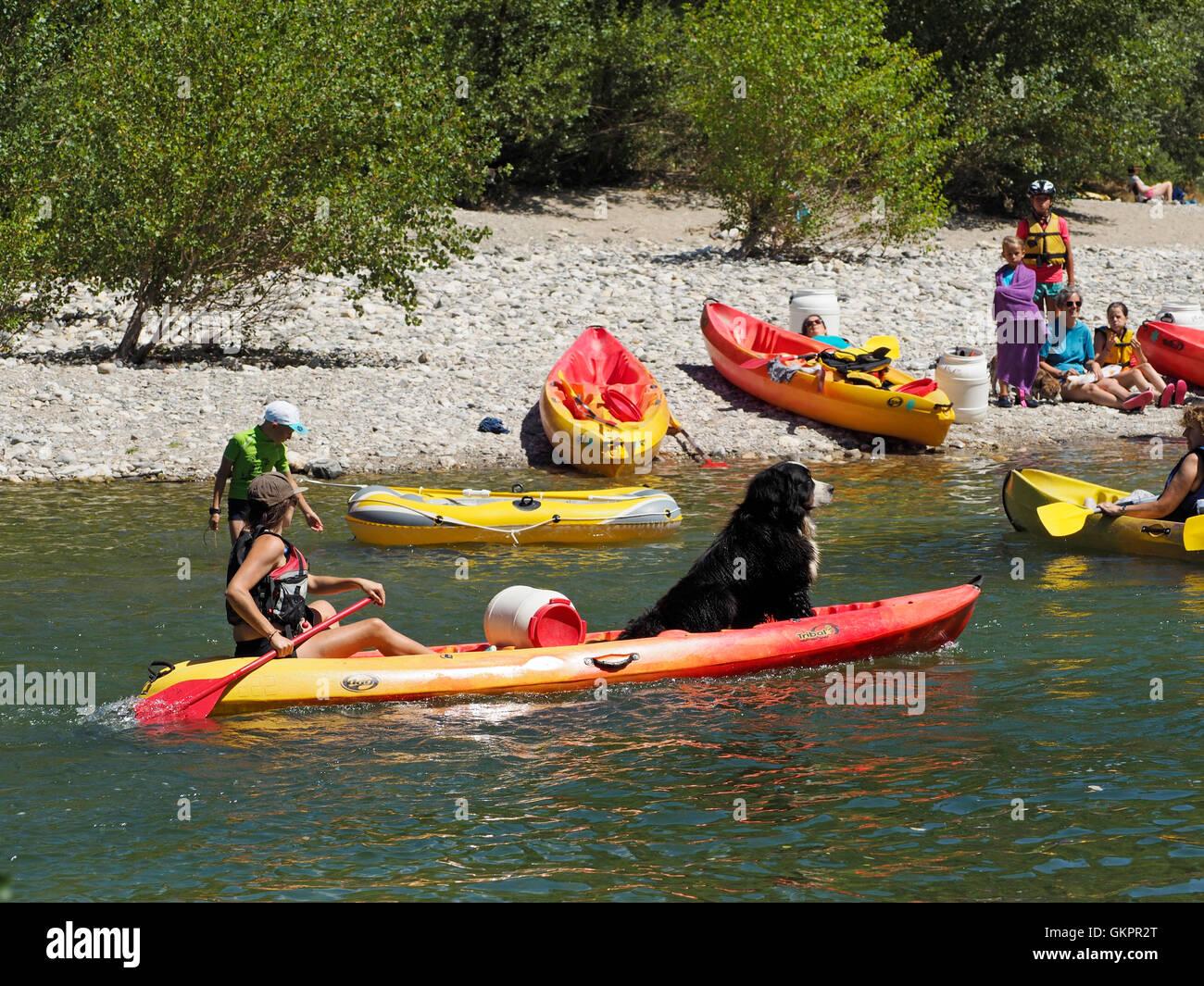 Incluso los perros ir en un viaje en canoa en Francia, este es el río Herault en la región de Cevennes. Imagen De Stock