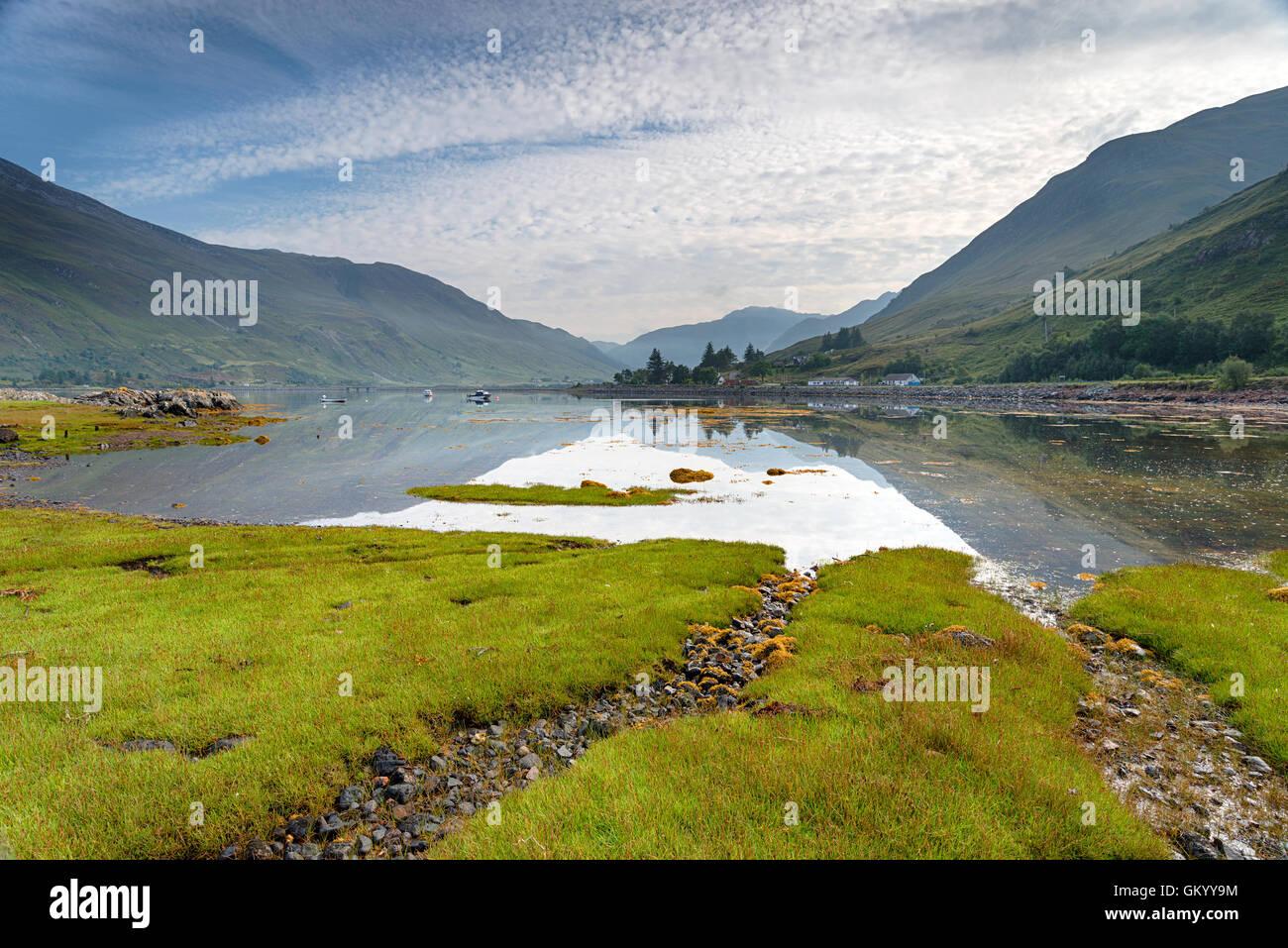 Temprano por la mañana en Loch Duich en las tierras altas de la costa occidental de Escocia con una alfombra verde Foto de stock