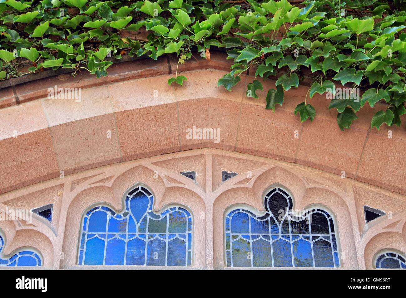 Ventana cubierto de hiedra, de la Universidad de Princeton, Princeton, Nueva Jersey, EE.UU. Imagen De Stock