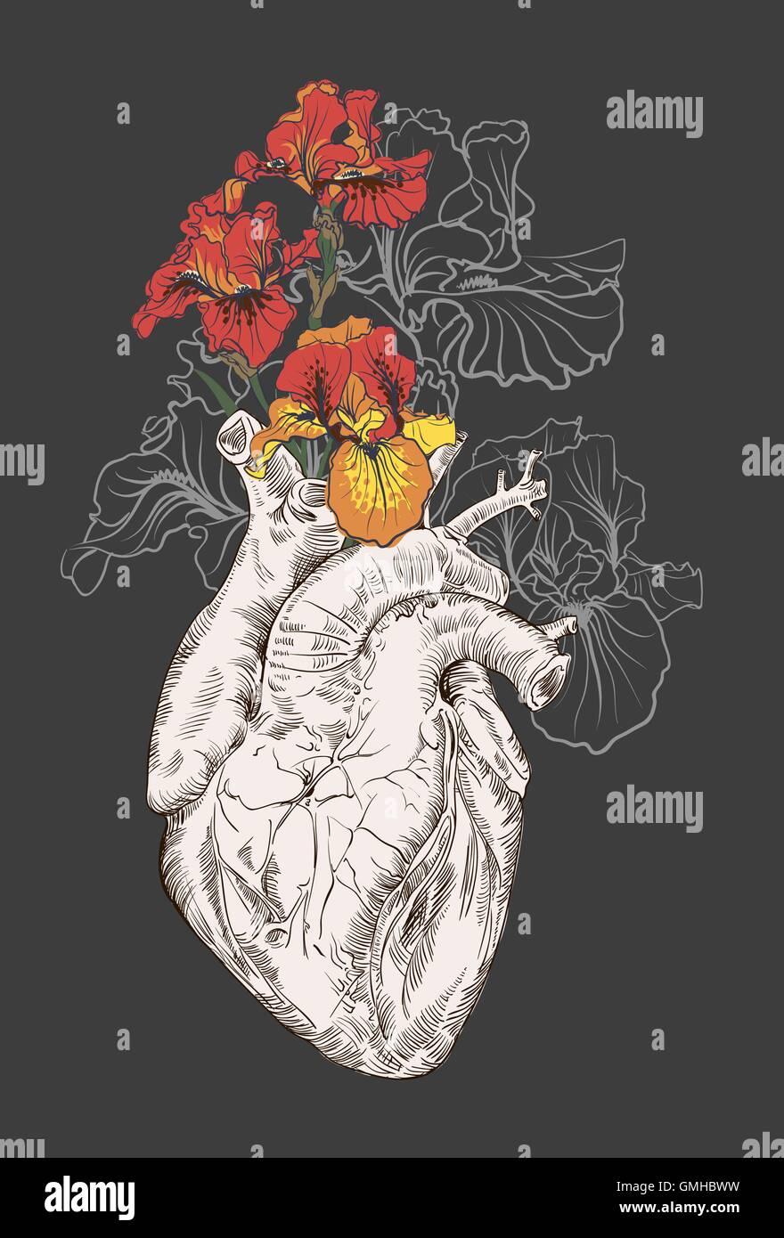 Dibujo Del Corazón Humano Con Flores Ilustración Del Vector Imagen