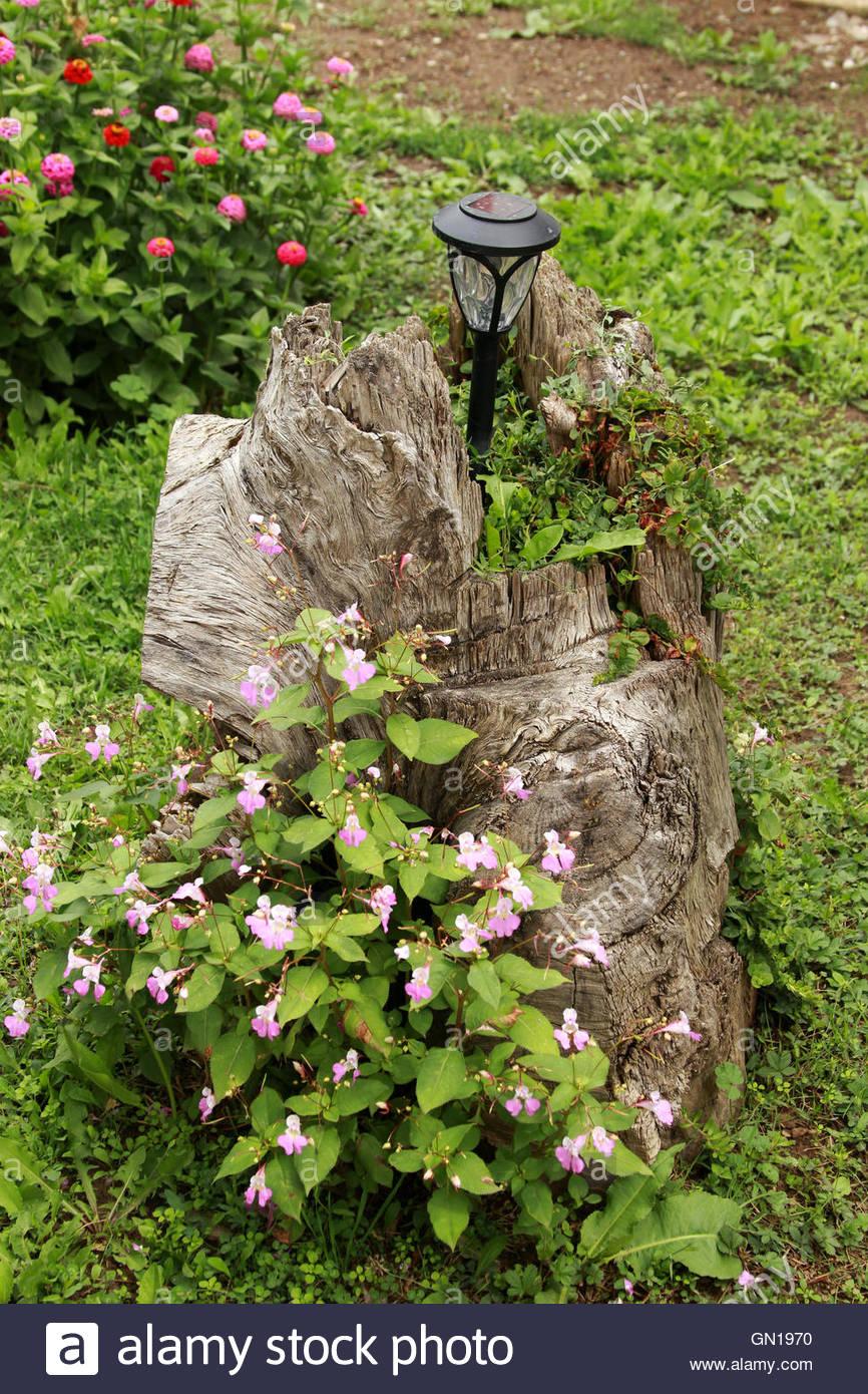 Un Tronco De Arbol Decorativo En El Jardin De Una Casa De Granja - Troncos-de-arboles-decorativos