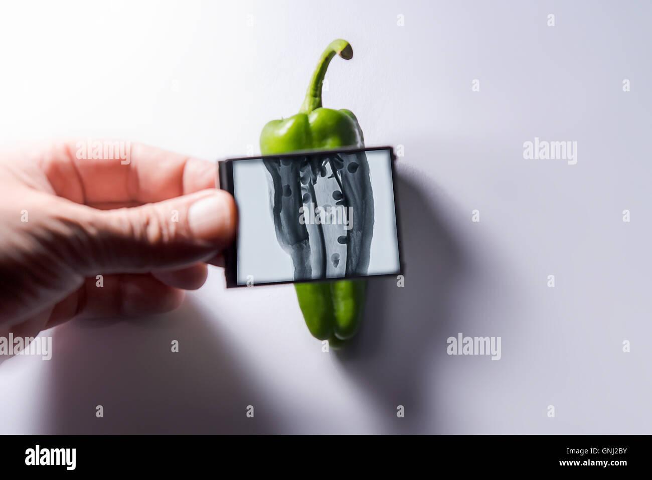 Mano sujetando la imagen de rayos x en frente de pimiento verde Imagen De Stock