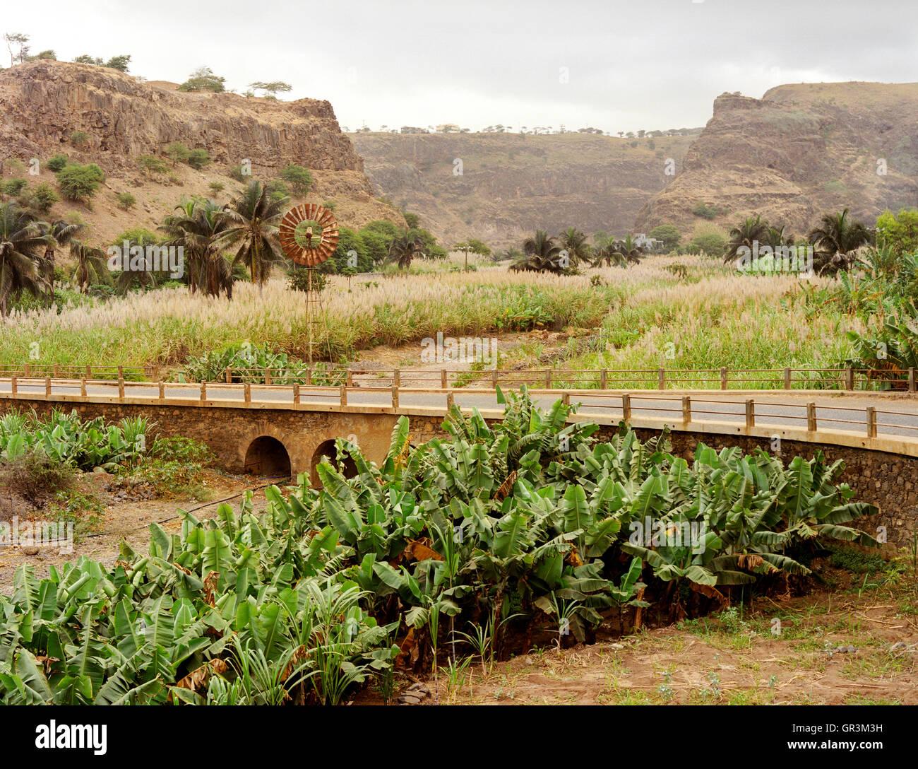 El molino de viento y granjas de caña de azúcar, Achanda Lenda, Ribeira Valle Principal, Santiago, Islas de Cabo Foto de stock