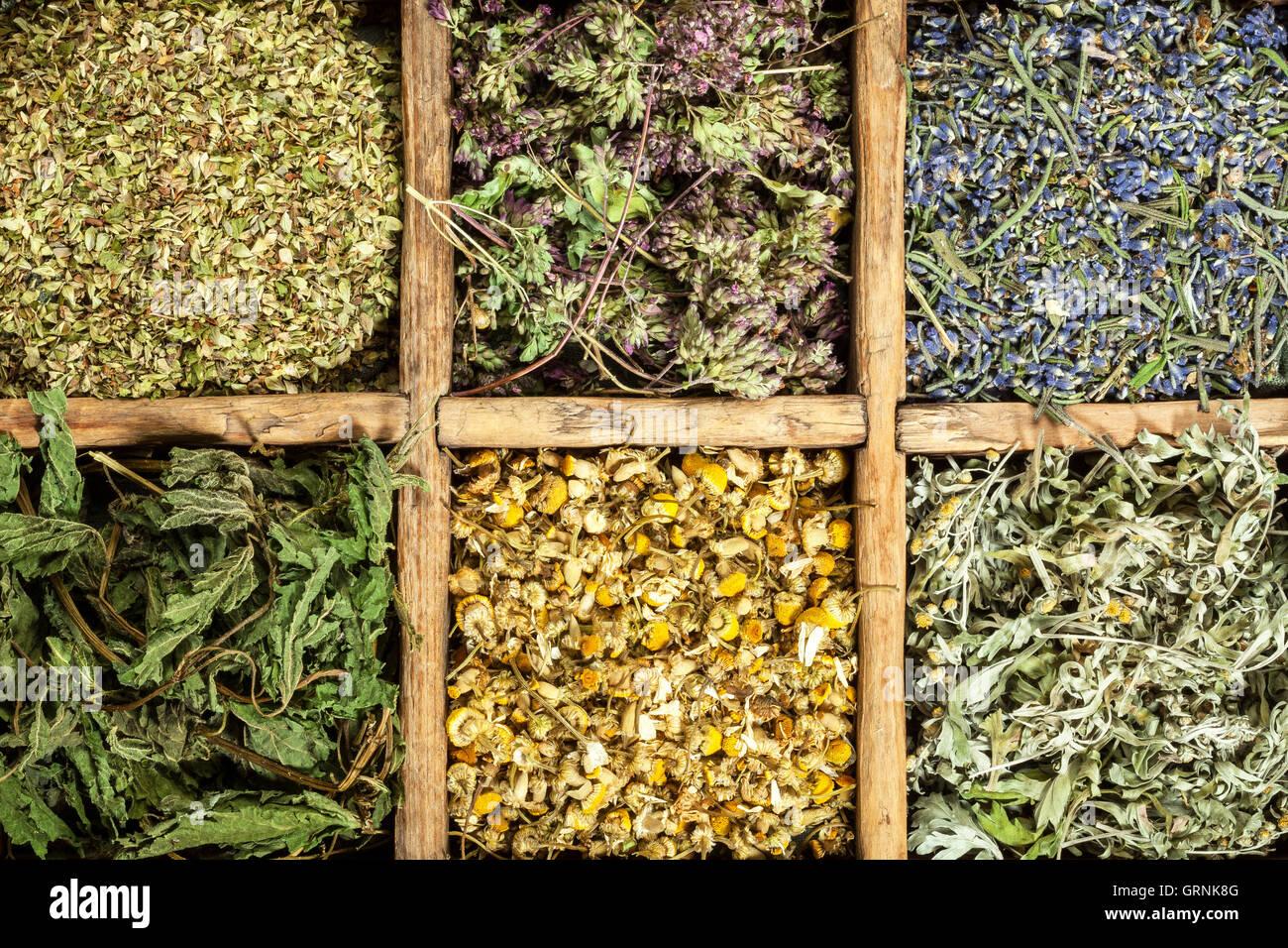 Médicos Hierbas secas surtidas de té. Imagen De Stock