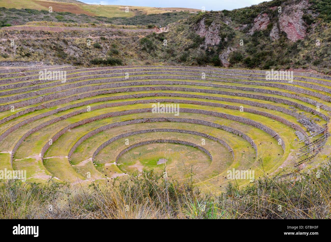 Antigua Inca Terrazas Agrícolas Circular En Moray Utilizados