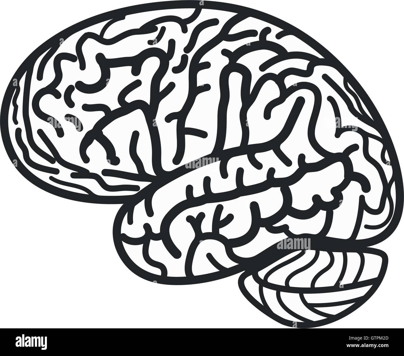 Blanco y negro aislado de contorno cerebral vector logo. Logotipo de silueta girus (flecha). Ilustración de Imagen De Stock