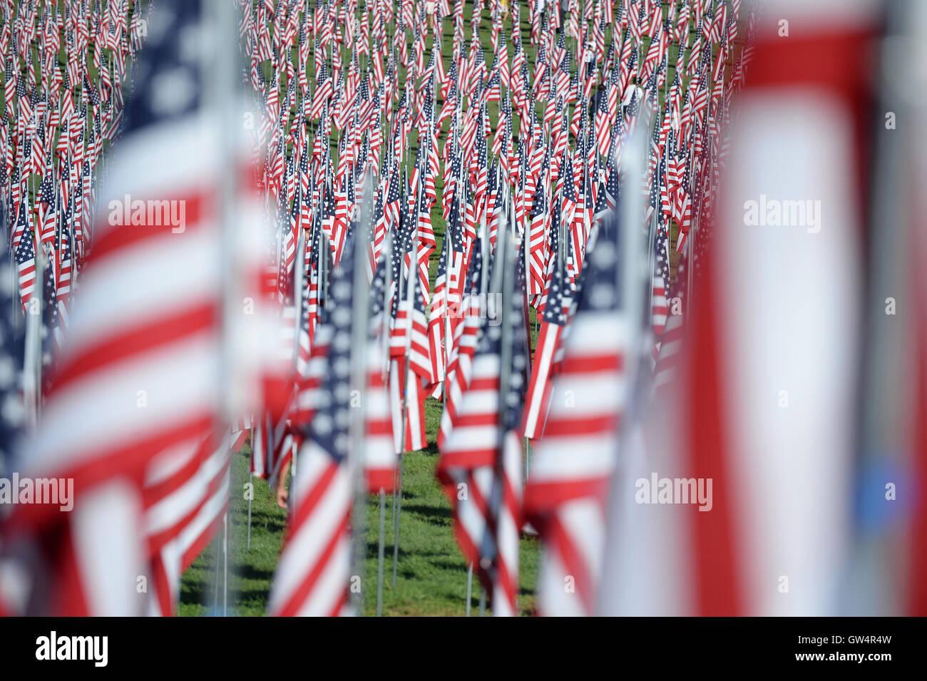 Saint Louis, MO - 11 de septiembre de 2016: Más de 7.000 marcas con nombre, foto y dog tag de soldado muerto defendiendo los Estados Unidos ola fuera del Museo de Arte de San Luis en San Luis, Misurí, Crédito: Gino's Premium Images/Alamy Live News Foto de stock