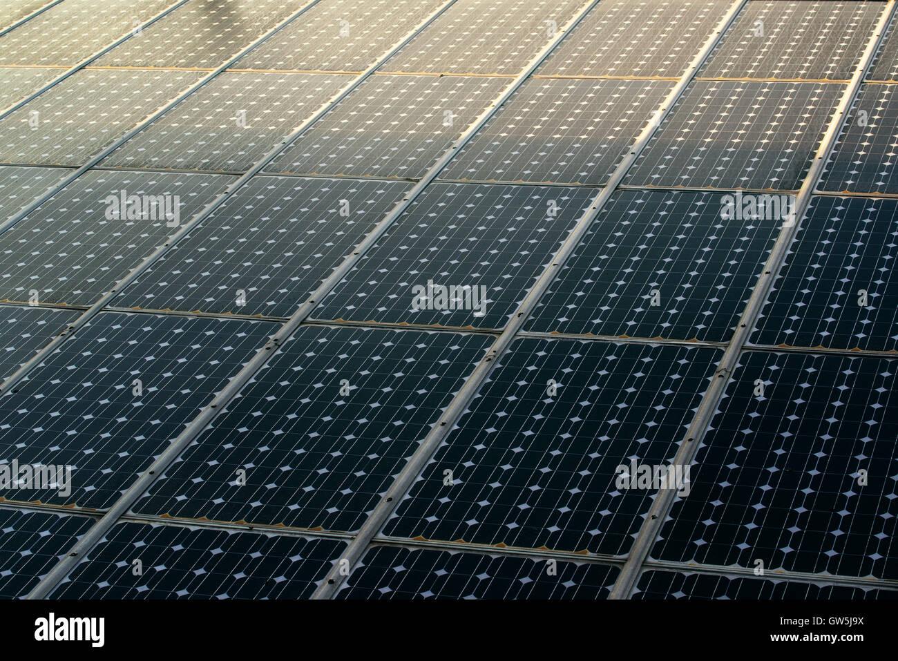 La luz del sol en los paneles solares fotovoltaicos módulos celulares Imagen De Stock