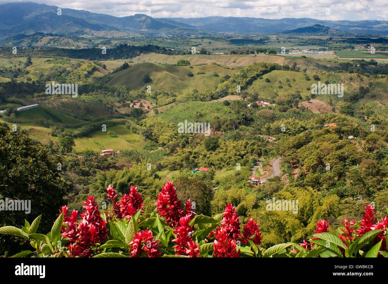 Hacienda San Alberto Las Plantaciones De Café Cerca De La