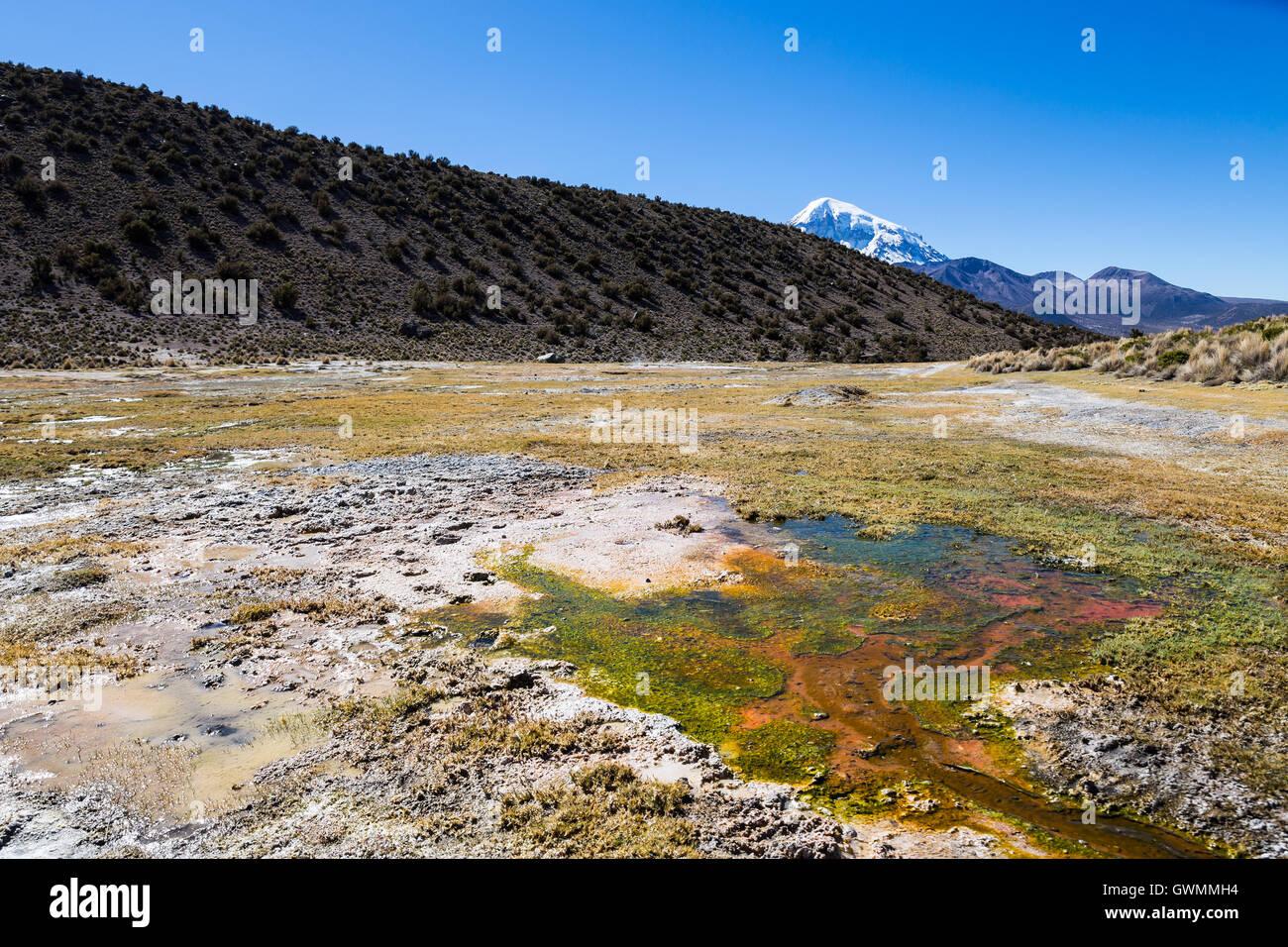 Géiseres andinos. Junthuma géiseres, formado por la actividad geotérmica. Bolivia. Las piscinas termales Imagen De Stock