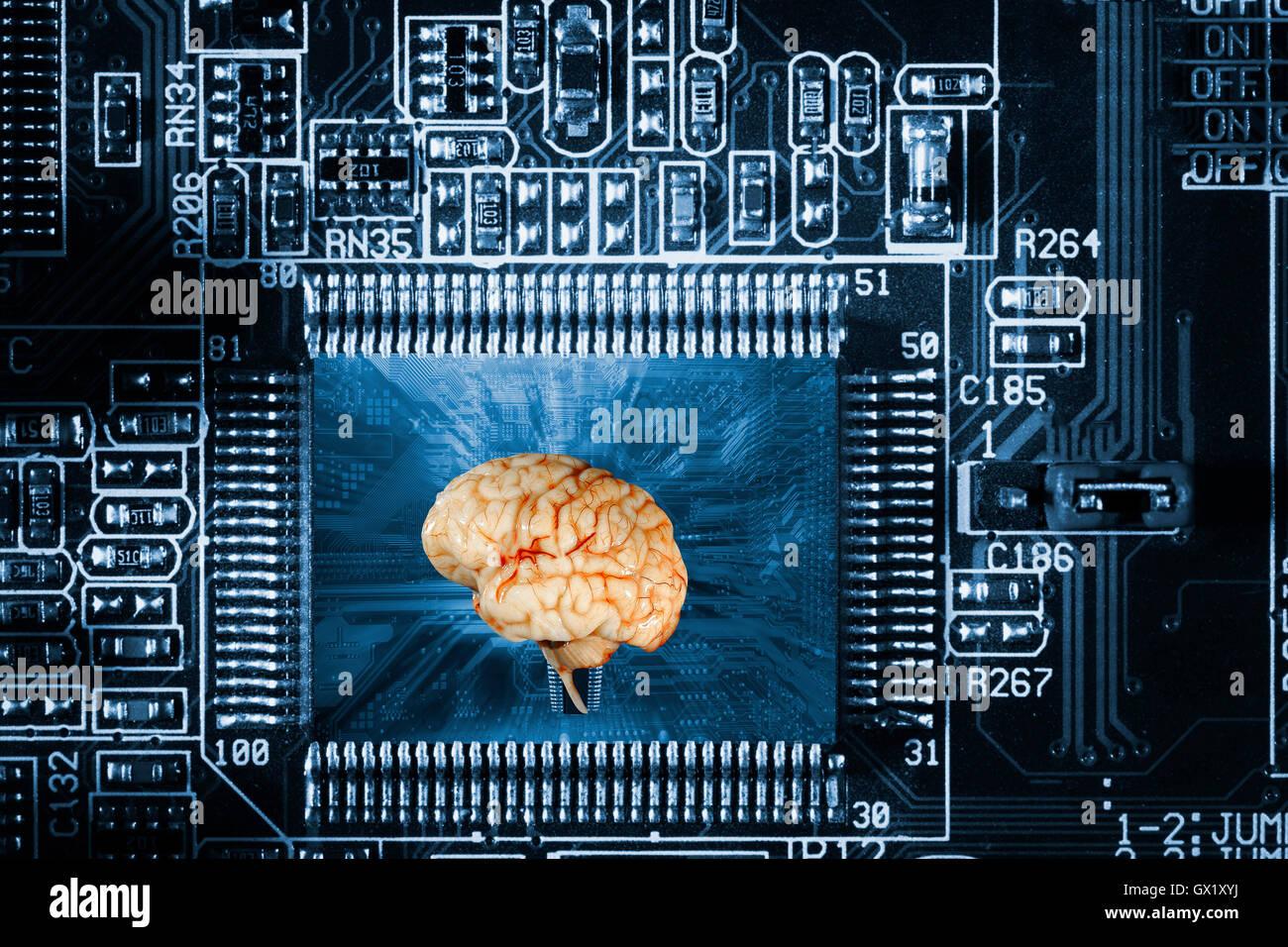 Cerebro Humano y la comunicación informatizada Imagen De Stock