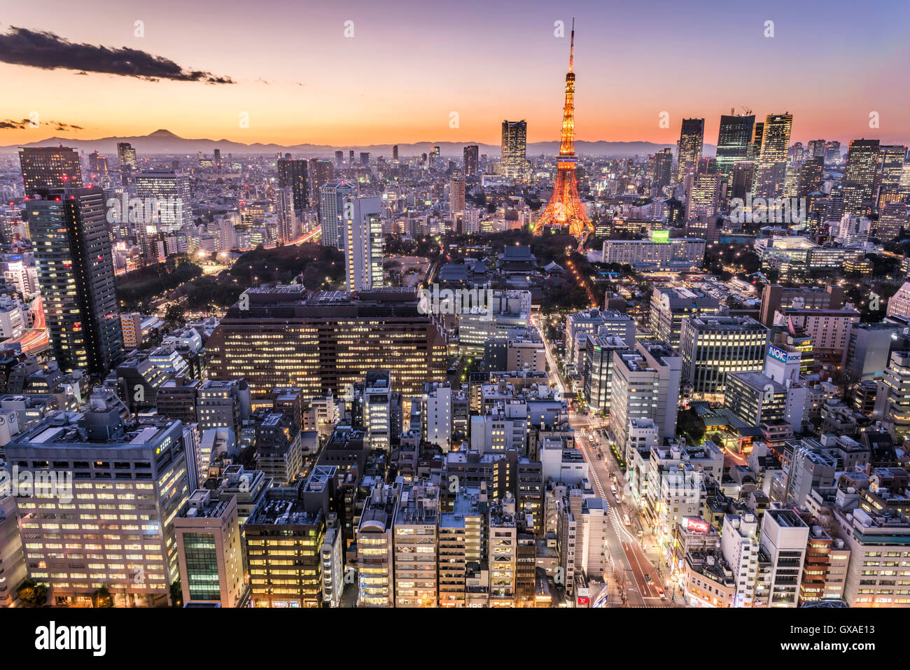 La Torre de Tokio y el Mt. Fuji, vista desde Minato-Ku, Tokio, Japón Foto de stock