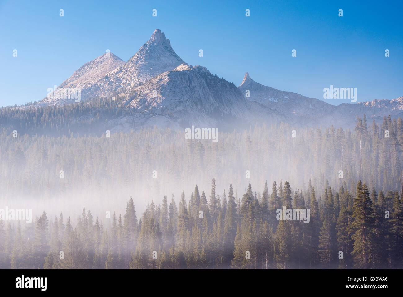 Pico de unicornio elevarse por encima de un bosque cubierto de neblina, el Parque Nacional Yosemite, California, Imagen De Stock
