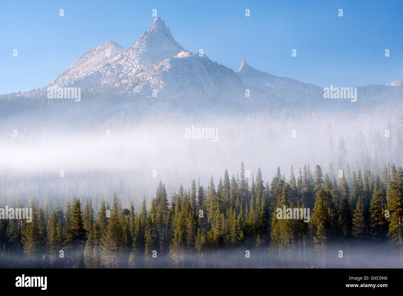 Niebla el bosque circundante a continuación Unicorn pico, el Parque Nacional Yosemite, California, USA. Otoño Imagen De Stock