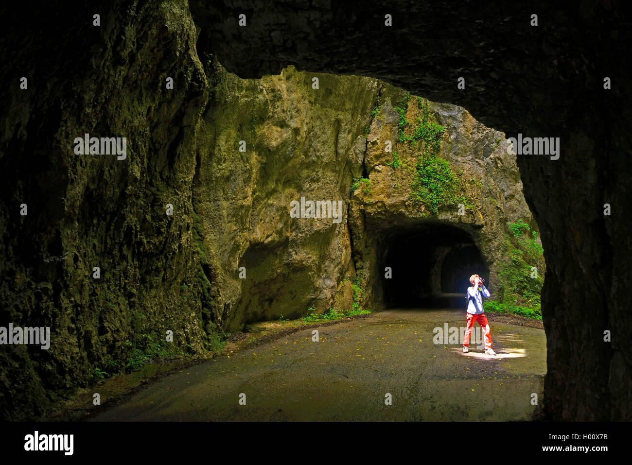 Carretera de montaña con túneles gorge Grands Goulet, Francia, Auvergne-Rh¶ne-Alpes, Parque Nacional de Vercors, Pont en Royans Foto de stock