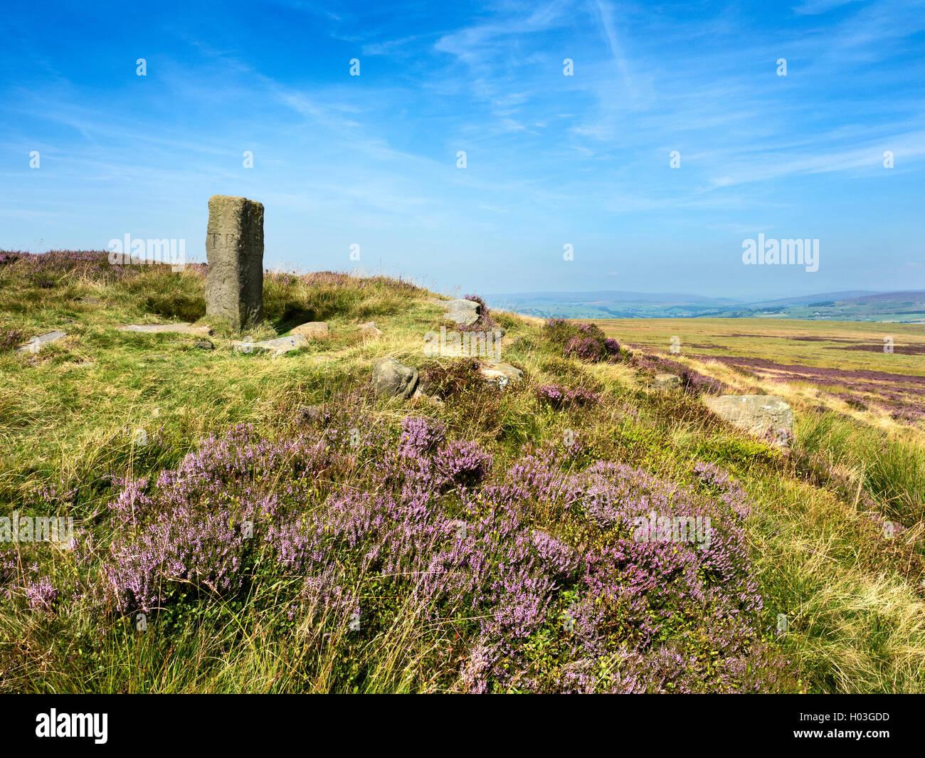 Lad Lanshaw Mojón fronterizo en Ilkley Moor en verano Ilkley West Yorkshire, Inglaterra Imagen De Stock
