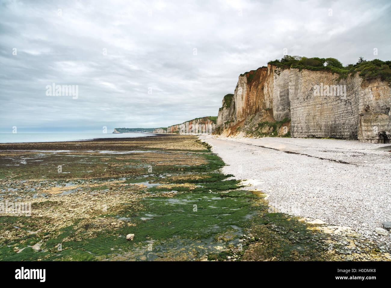 Yport y Fecamp, Normandía. Playa, acantilados y rocas en marea baja mar. Francia, Europa. Foto de stock