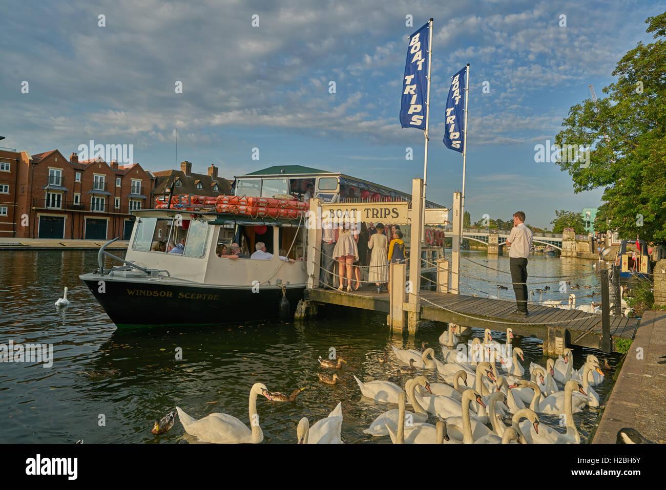 Viaje en barco en el río Támesis, Windsor. Imagen De Stock