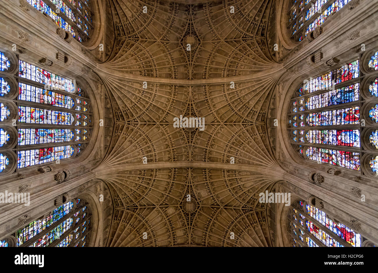 Techo de la capilla de King's College, Universidad de Cambridge, mostrando el ventilador medieval bóvedas. Foto de stock