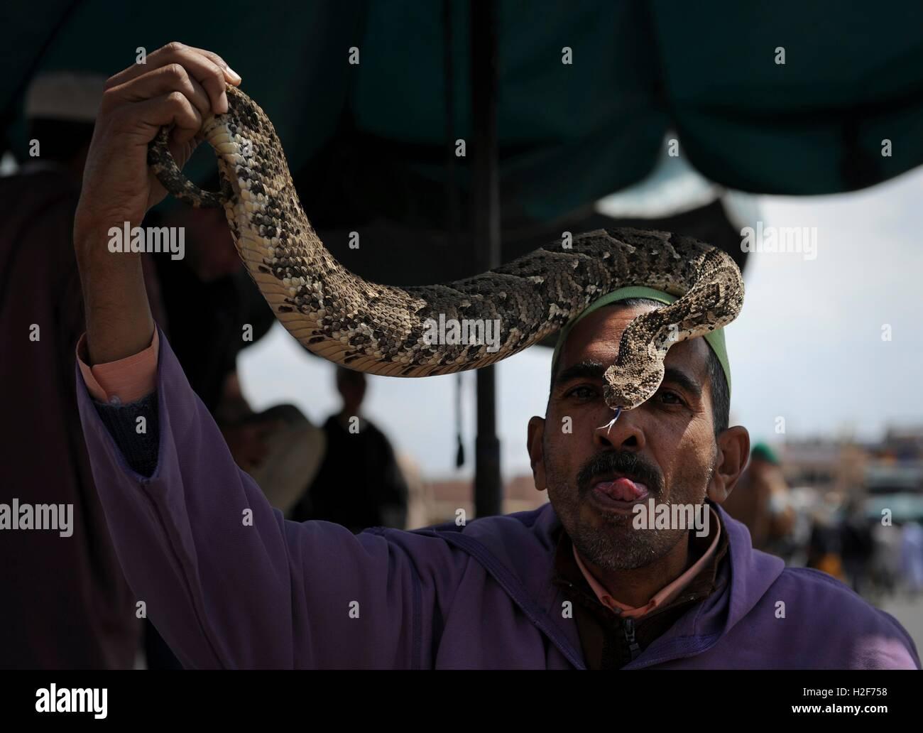 Un domador de serpientes marroquí besa a una serpiente en la plaza del mercado de Jemaa el Fna, 3 de abril Imagen De Stock