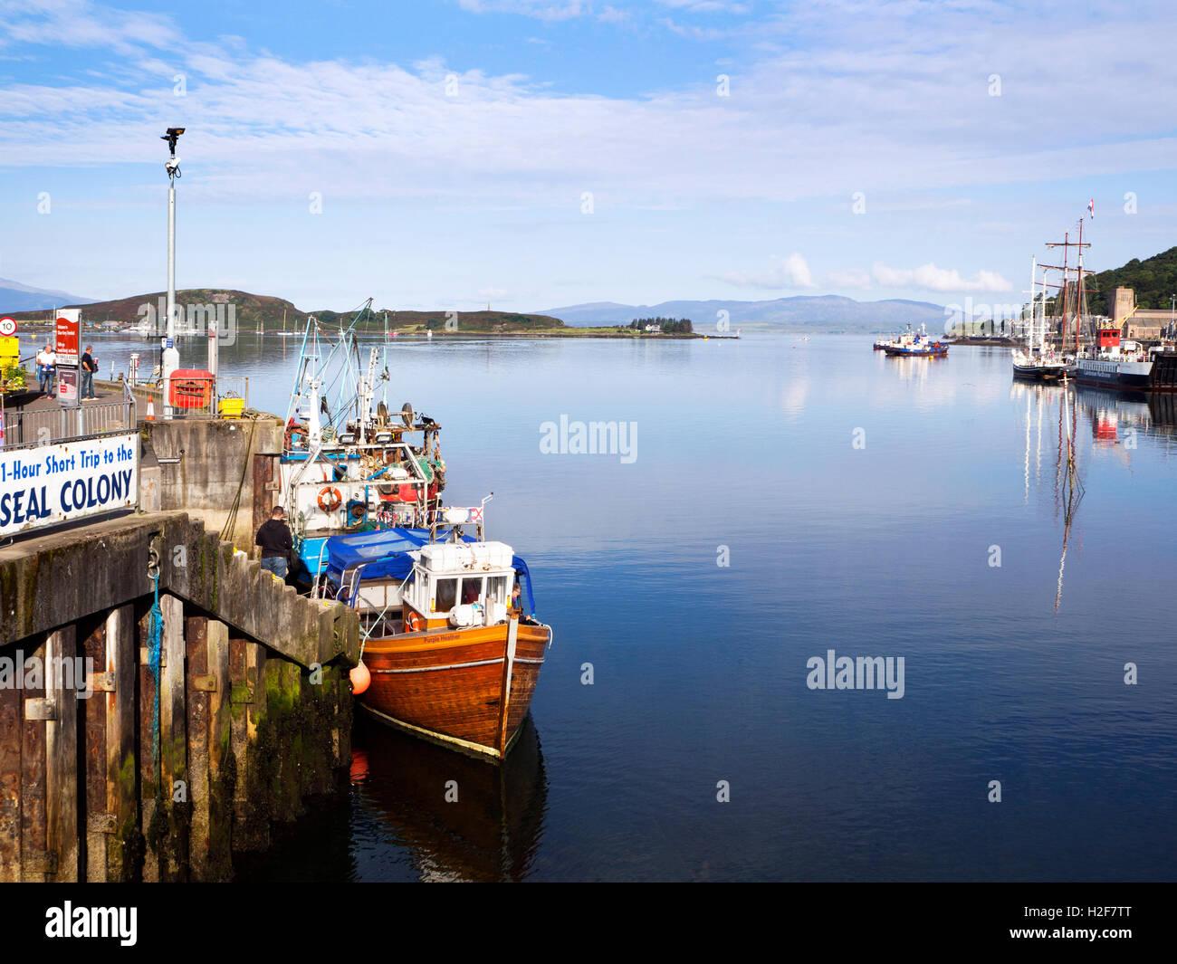 Colonia de Focas viaje en lancha al muelle y ferrocarril de la bahía de Oban Oban Argyll and Bute Escocia Imagen De Stock