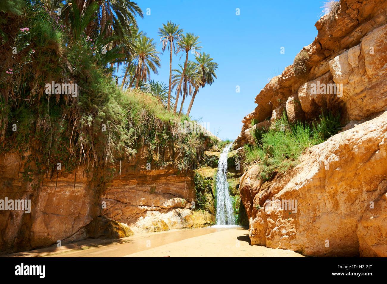 Mides Gorge cascada entre las palmeras del desierto del Sahara oasis de Mides, Túnez, África del Norte Foto de stock