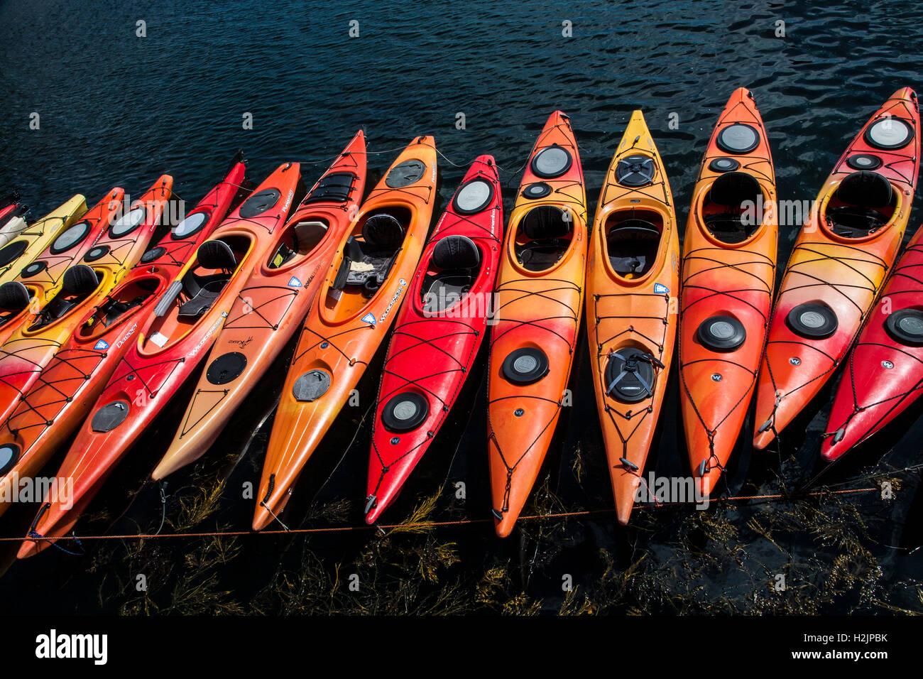 Cerrar un colorido patrón abstracto de una fila de kayaks, Rockport, Massachusetts, Estados Unidos, Nueva Inglaterra, Imagen De Stock