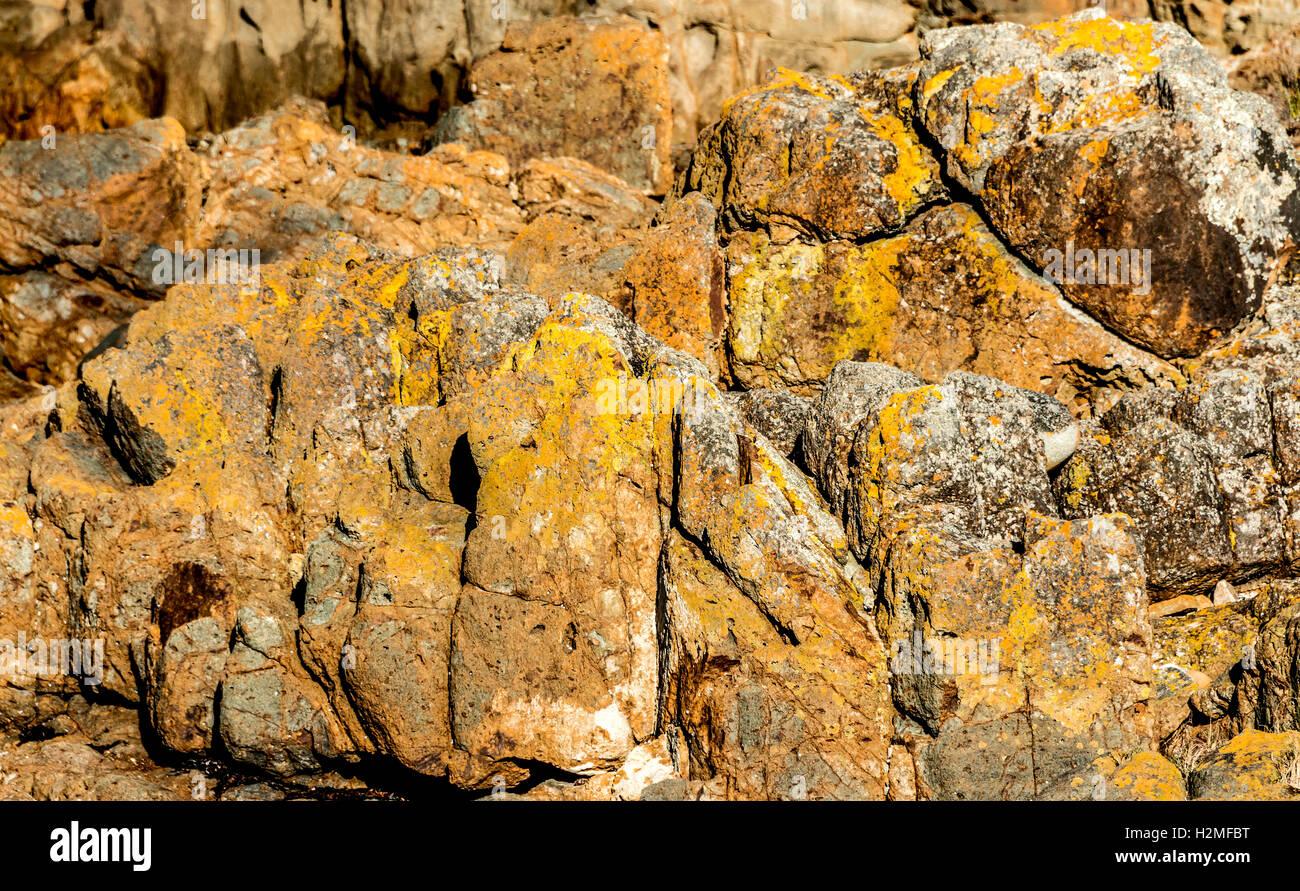 Cerca de colores amarillo y naranja texturas de una roca en una playa aislada en el Parque Nacional Rocas Mimosa, Imagen De Stock