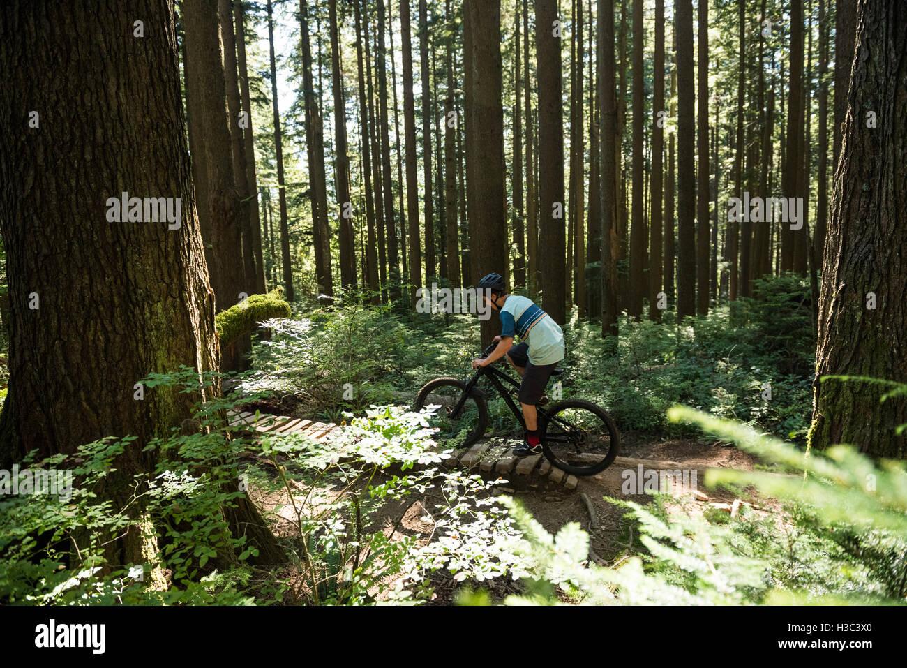 Ciclista ciclismo en el bosque Imagen De Stock