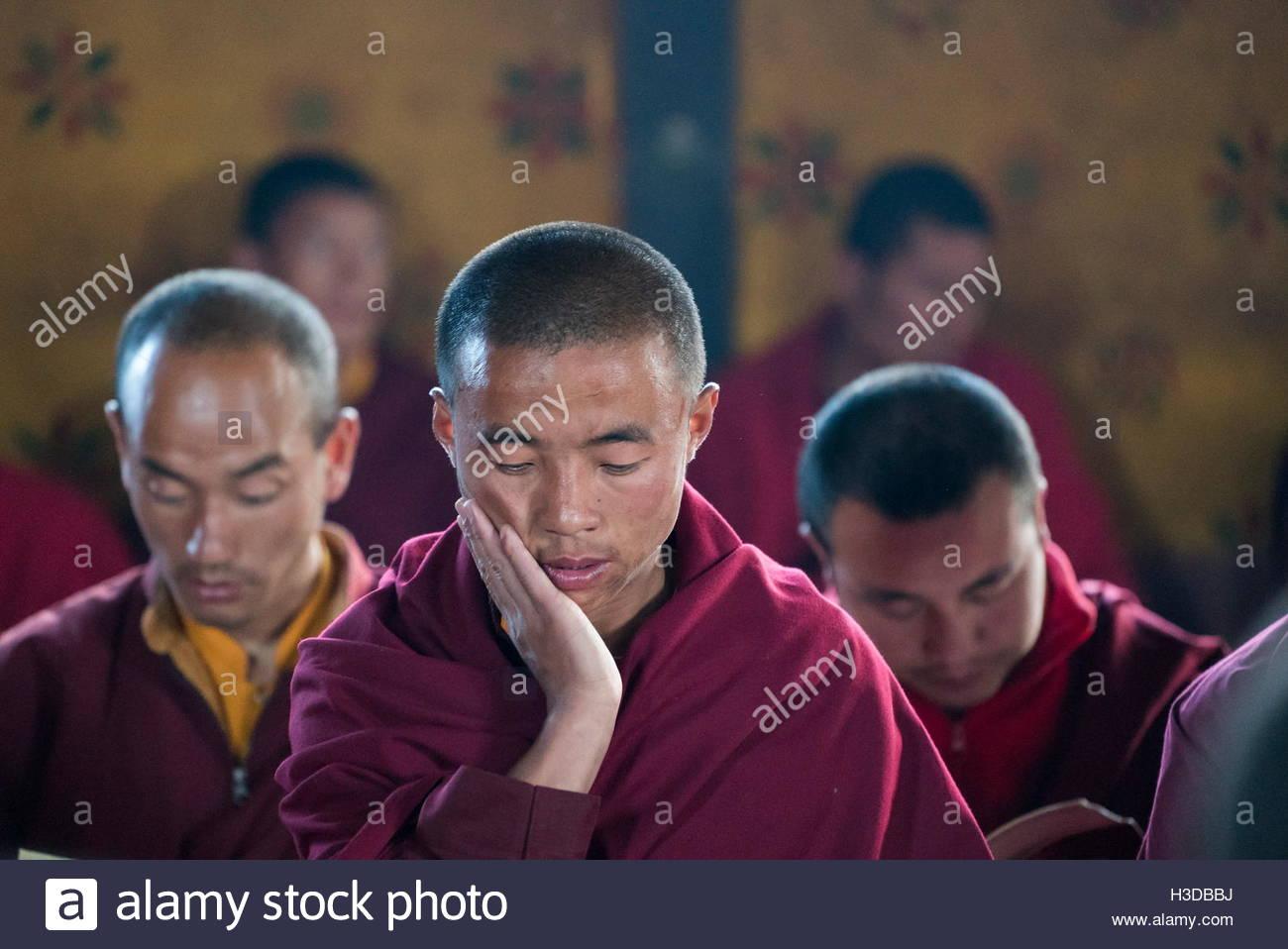 Monjes realizan una aspiración oración de Samantabadra Kuntuzangpo En la Shedra Gangtey en el valle de Imagen De Stock