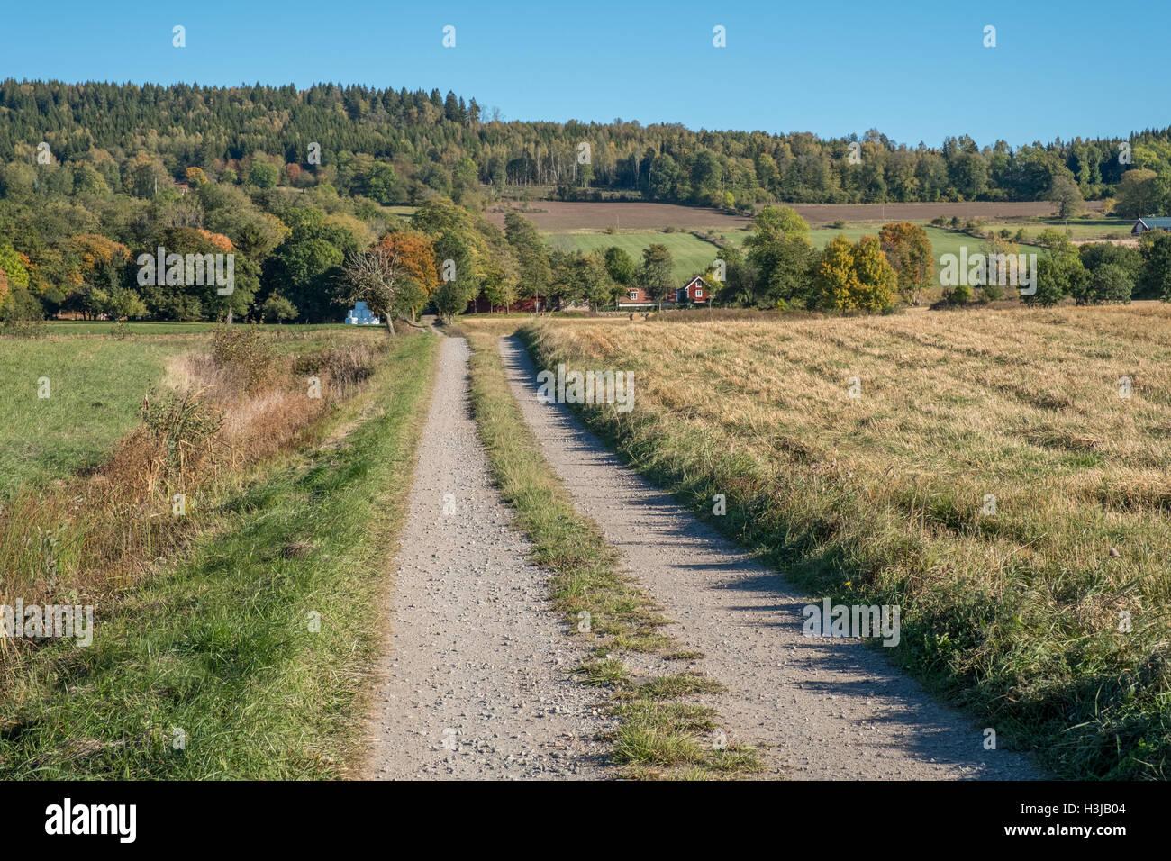 Otoño en la campiña de Vastergotland, Suecia Foto de stock