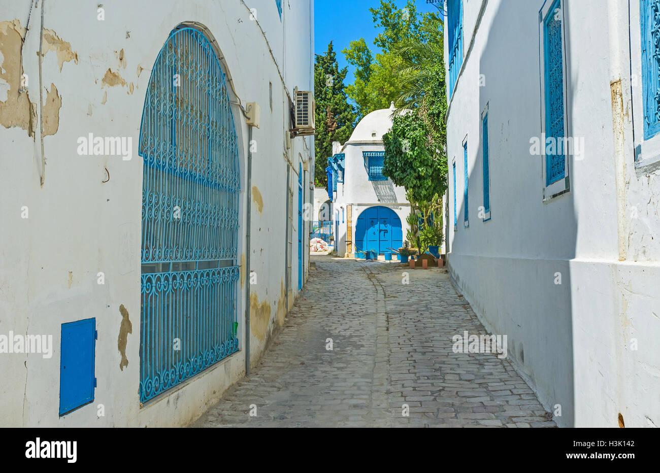El typic de Sidi Bou Said street, con sus casas blancas, puertas y ventanas azules, Túnez. Imagen De Stock